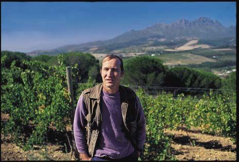 Mike, Winemaker at Mulderbosch