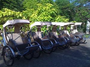 Vietnam, Rickshaw